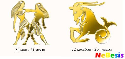 Козерог-Мужчина и Близнецы-Женщина