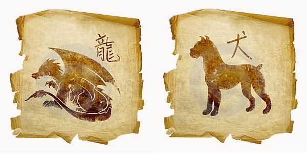 Дракон-мужчина и Собака-женщина
