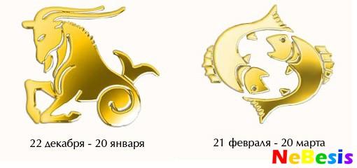 Козерог-мужчина и Рыбы-женщина
