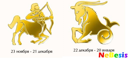 Козерог-мужчина и Стрелец-женщина