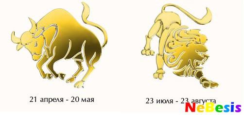 Лев-мужчина и Телец-женщина