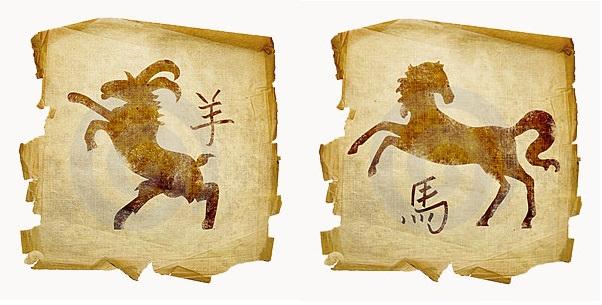 Коза-мужчина и Лошадь-женщина