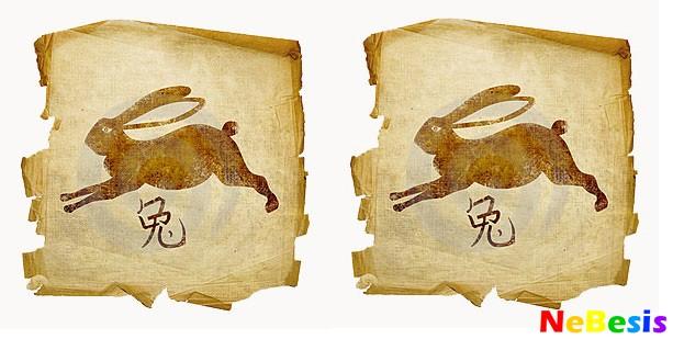 Кролик-мужчина и Кролик-женщина