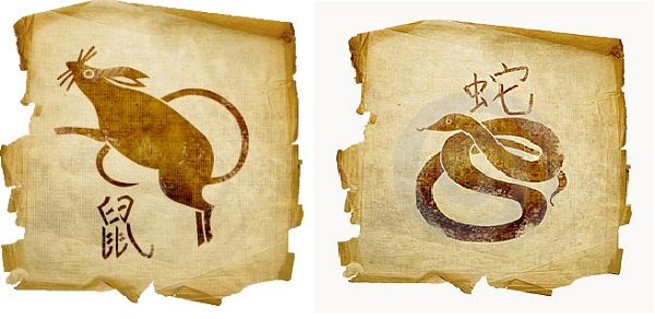 Змея-мужчина и Крыса-женщина
