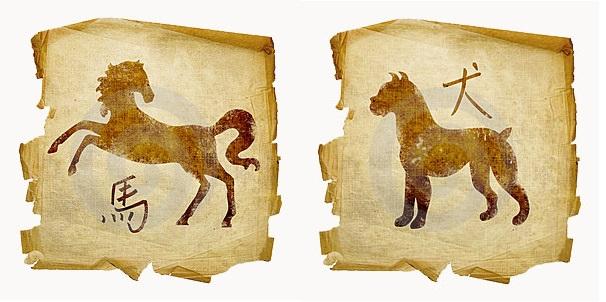 Собака-мужчина и Лошадь-женщина