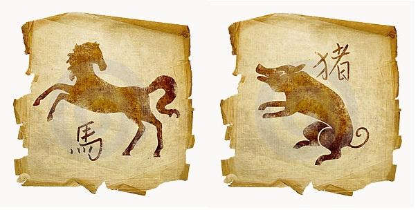 Кабан-мужчина и Лошадь-женщина