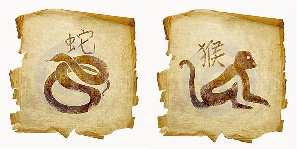 Змея-мужчина и Обезьяна-женщина