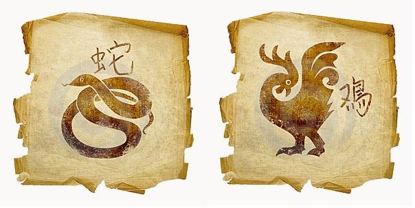 Петух-мужчина и Змея-женщина