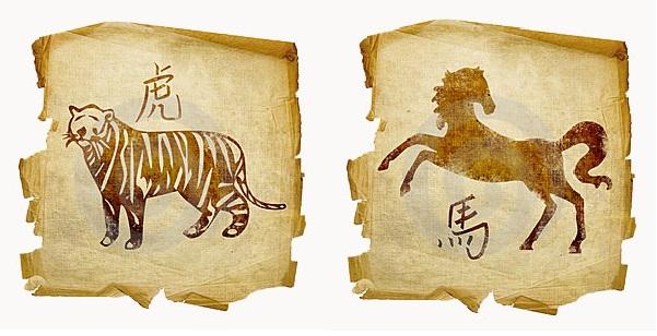 Лошадь-мужчина и Тигр-женщина