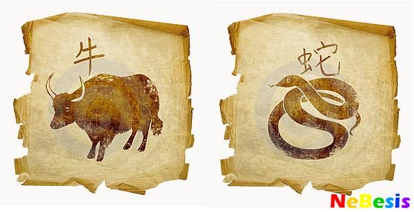 Бык-мужчина и Змея-женщина