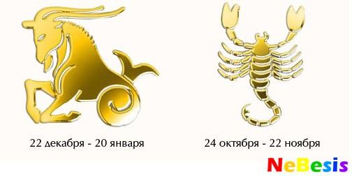 Козерог-мужчина и Скорпион-женщина
