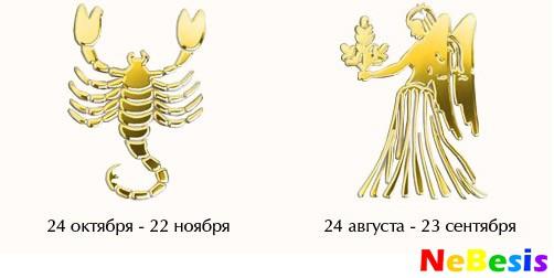 Скорпион-мужчина и Дева-женщина