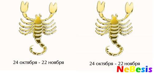 Скорпион-мужчина и Скорпион-женщина