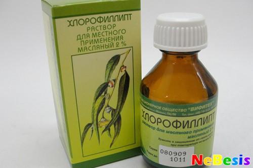 Хлорофиллипт при гайморите