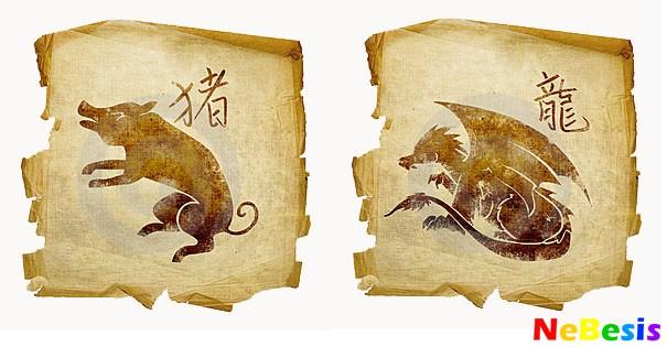 svin-drakon