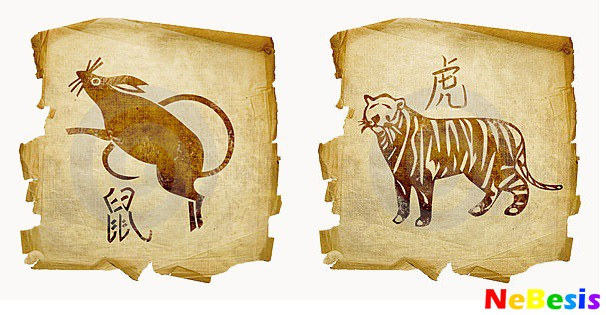 Крыса-мужчина и Тигр-женщина