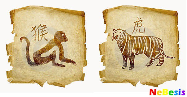 Обезьяна-мужчина и Тигр-женщина