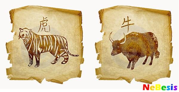 Тигр-мужчина и Бык-женщина