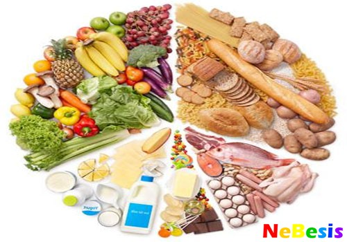 Белково-овощная диета 20 дней
