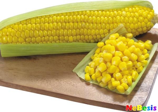 Кукурузная диета для похудения