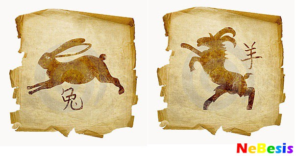 Коза-мужчина и Кролик-женщина