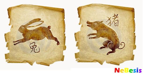 Кролик-мужчина и Свинья-женщина