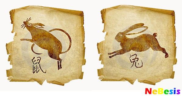 Крыса-мужчина и Кролик-женщина