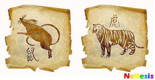 Тигр-мужчина и Крыса-женщина