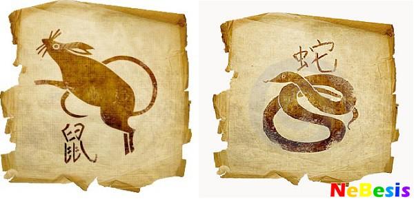 Крыса-мужчина и Змея-женщина