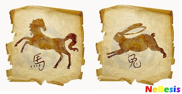 Кролик-мужчина и Лошадь-женщина