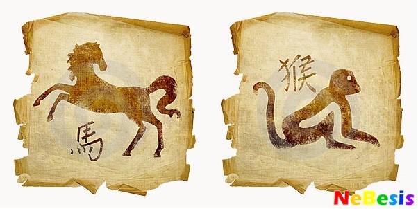 Обезьяна-мужчина и Лошадь-женщина