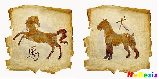 Лошадь-мужчина и Собака-женщина