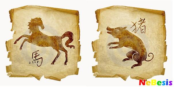 Свинья-мужчина и Лошадь-женщина