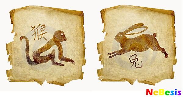 Кролик-мужчина и Обезьяна-женщина