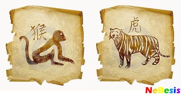 Тигр-мужчина и Обезьяна-женщина