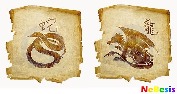 Змея-мужчина и Дракон-женщина