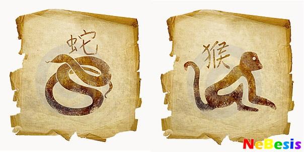 Обезьяна-мужчина и Змея-женщина