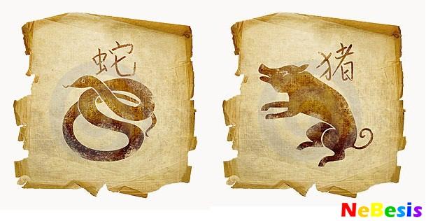 Свинья-мужчина и Змея-женщина