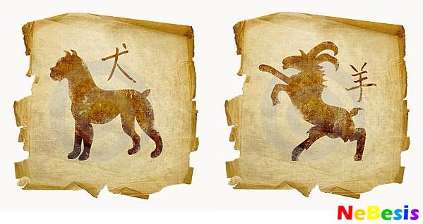 Коза-мужчина и Собака-женщина
