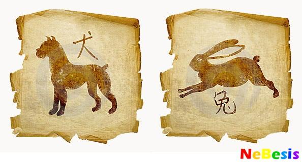 Кролик-мужчина и Собака-женщина