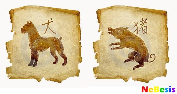 Свинья-мужчина и Собака-женщина