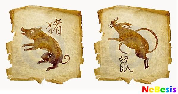 Крыса-мужчина и Свинья-женщина