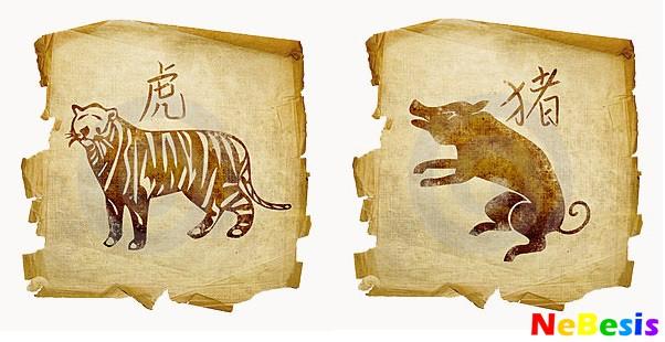 Свинья-мужчина и Тигр-женщина