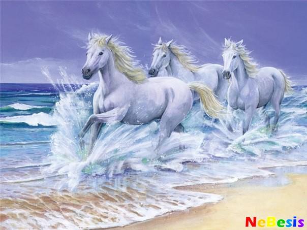 Лошадь по Фен-шуй