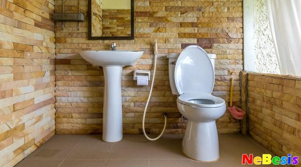 Туалет по Фен-шуй