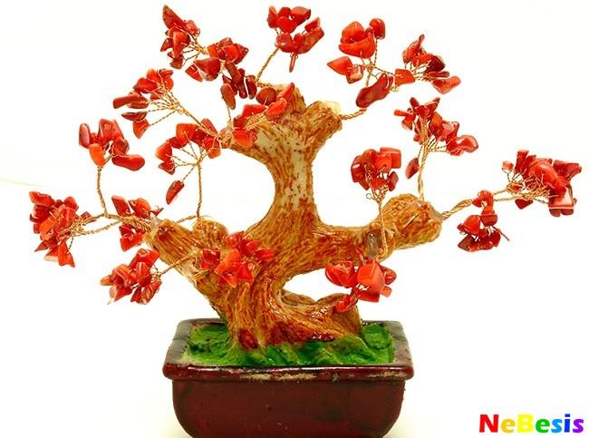 Дерево счастья по Фен-шуй